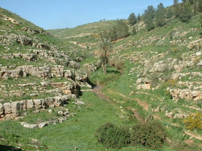 وادي-البادان-